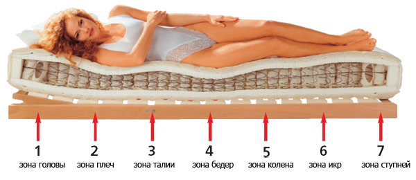 7 зон качественного ортопедического матраса